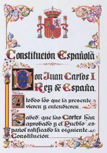 20090317120932-constitucion