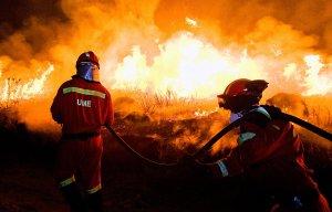 1091-2015-05-18-UME_incendios
